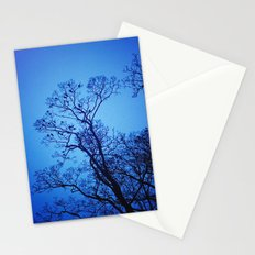 Birds at night Stationery Cards