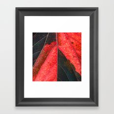 Red, Green  Framed Art Print