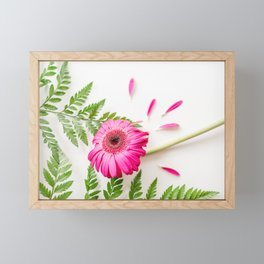 Gerbera Daisy & Fern Art Framed Mini Art Print