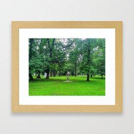 Park Krakowski Framed Art Print