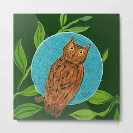 zakiaz full moon owl Metal Print