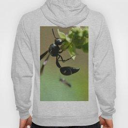 whispy wasp Hoody