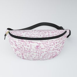 Physics Equations // Pink Fanny Pack