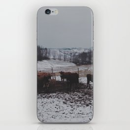 Cow's Land  iPhone Skin