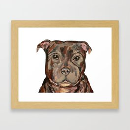 Sallie the dog Framed Art Print
