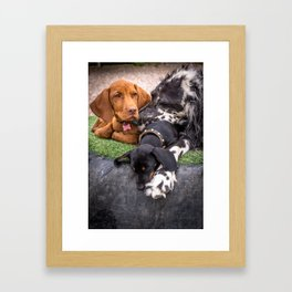 Pup Pile-up Framed Art Print