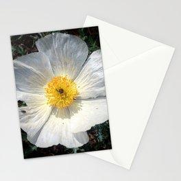 Prickly Poppy Stationery Cards