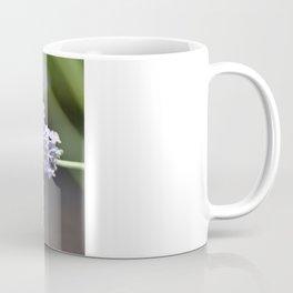 Saveur Lavande Coffee Mug