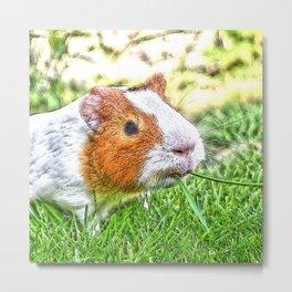 CArt Guinea Pig Metal Print
