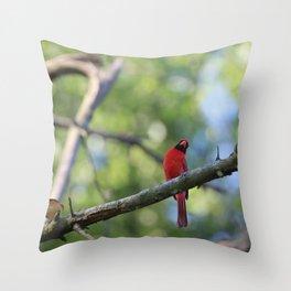 Cardinal IV Throw Pillow