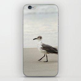 Seagull Stroll iPhone Skin