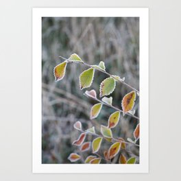 The last colors Art Print