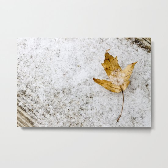 snow and a leaf Metal Print