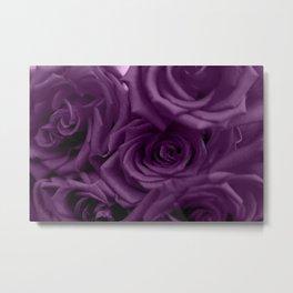 Bed of Roses - Purple Metal Print