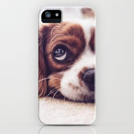Bobby Dog iPhone Case
