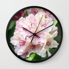 PINK RHODODENDRON Wall Clock