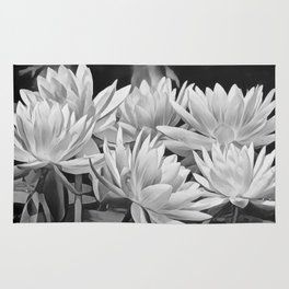 Water Lily in Black and White Rug