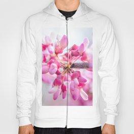 Eastern Redbud Floral Photograph Hoody