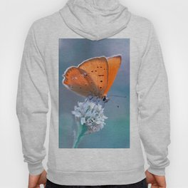 Small Copper 02 Hoody