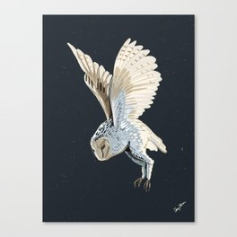 Owl flying in the night Canvas Print