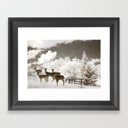 Deer Winter White Nature Framed Art Print