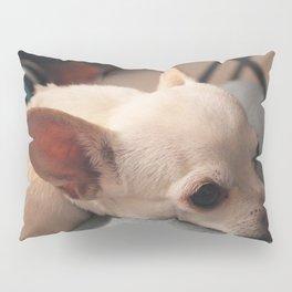 Lap Dog Chihuahua Pillow Sham