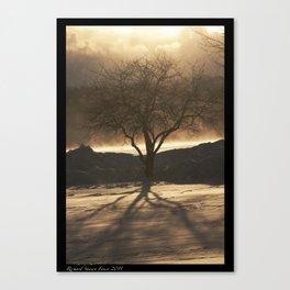 Amber Tree Canvas Print