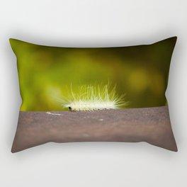 Beauty Before Beauty Rectangular Pillow