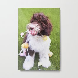 Labradoodle Easter Egg Hunt Metal Print