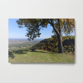 Indian Ladder Upstate New York Metal Print
