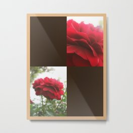 Red Rose with Light 1 Blank Q3F0 Metal Print