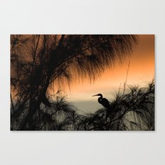 Home to Roost Canvas Print