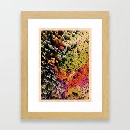 AQUART / PATTERN SERIES 007 Framed Art Print