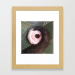 ringtail possum Framed Art Print