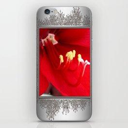 Amaryllis named Black Pearl iPhone Skin