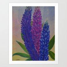 Lupines Art Print