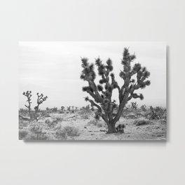 joshua tree bw Metal Print