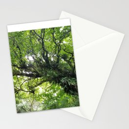 Even Trees Hold Hands Stationery Cards