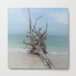 Remember Your Roots Metal Print