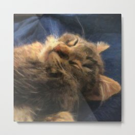 Sleeping Lion Kitty Metal Print