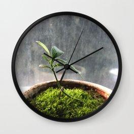 Starting Wall Clock