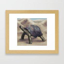 Tortoise Framed Art Print