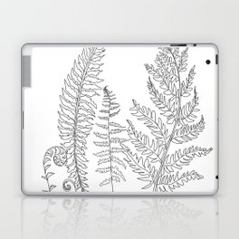 Minimal Line Art Fern Leaves Laptop & iPad Skin