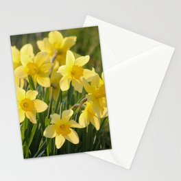 Yellow spring daffodil Photography Stationery Cards