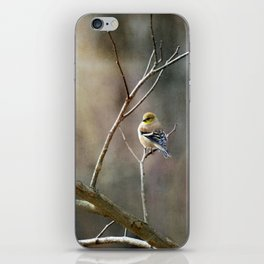 Morning Goldfinch iPhone Skin