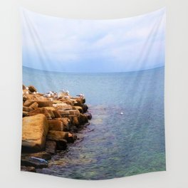 seagulls on the coast Wall Tapestry