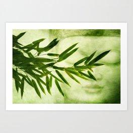 green bamboo Art Print