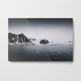 Arctic Wilderness 03 - Glacier, Gull and Mountains Metal Print