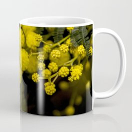 mimosa flower I Coffee Mug