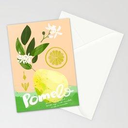 Botanical Diagram: Pomelo Stationery Cards